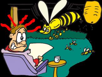 pixabay-bb493bcc9c2a4650